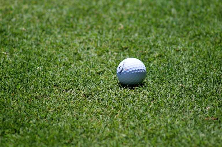 grass ball golf golf ball